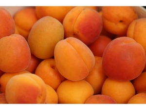 Apricot Nutrition Benefits Recipes