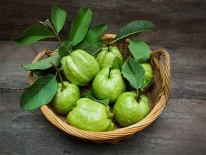 Guava Nutrition Benefits Recipes
