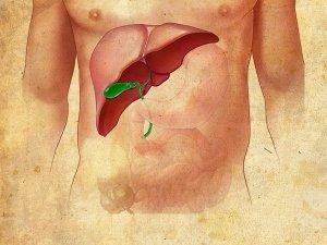 Alcoholic Hepatitis Causes Symptoms Treatment Prevention