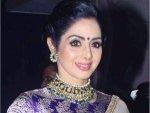 Sridevi As A Connoisseur Of Beauty
