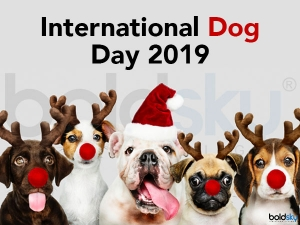 International Dog Day: History And How To Celebrate This Day