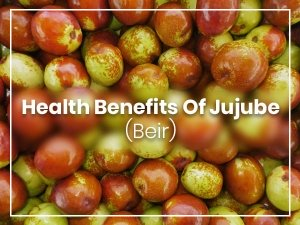 Jujube Benefits Side Effects Recipe