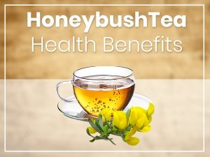 Honeybush Tea Nutrition Benefits Side Effects