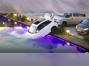 Dog In China Accidentally Drove His Owners Suv Into A Pond