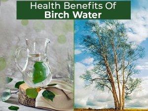 Health Benefits Of Birch Water