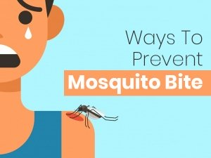 Natural Ways To Prevent Mosquito Bites