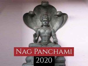 Nag Panchami Dos And Donts