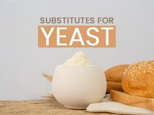 Yeast Substitutes For Baking