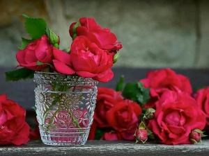 Valentine S Day What Do Different Colours Of Roses Mean