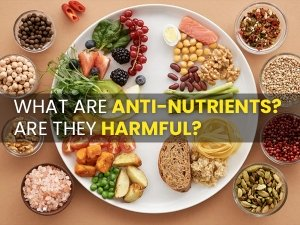 What Are Anti Nutrients Are They Harmful