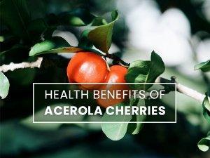 Health Benefits Of Acerola Cherries Powerhouse Of Vitamin C