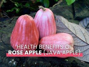 Amazing Health Benefits Of Rose Apple Java Apple