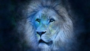 Sun Transit In Leo On 17th August 2021 Effects On Zodiac Signs