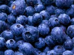 Blueberries Old Age Memory