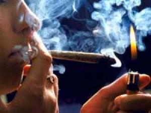 Cannabis Brain Abnormality Memory