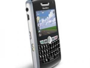 Kerela Blackberry