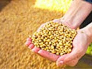 Modern Technology Farming Punjab