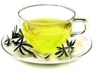 Green Tea Fights Glaucoma