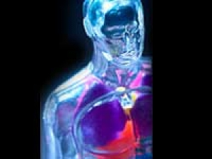 Synthetic Peptide Benefits Lung Transplants