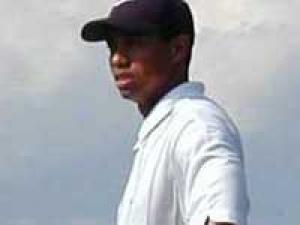 Tiger Woods Elin Divorce