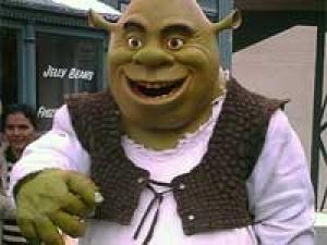 New Shrek Themed Wedding