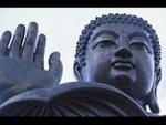 Buddha Short Story Osho Respond React