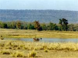 Bandhavgarh Travel Blog