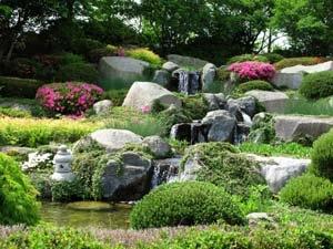 Making Rock Garden