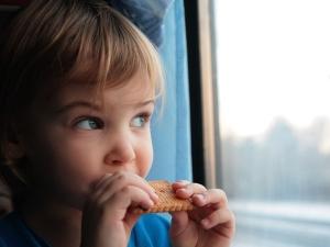 Healthy Food Travel