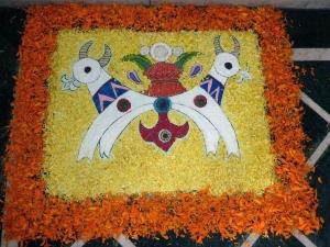 Holy Cow Festivals