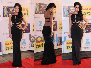 Zee Cine Awards 2014 Sonal Chauhan Shivan Narresh