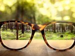 Nine Powerful Home Remedies To Increase Vision