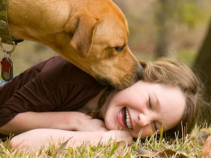 Harmful Effects Of A Pets Lick