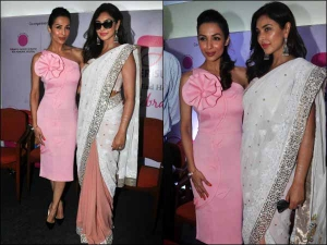 Malaika Arora Khan Lisa Ray At Breast Cancer Survivors Conference
