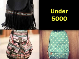 Budget Diaries Bagpack Under Five Thousand