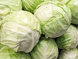 How Safe Is It To Eat Cabbage In Pregnancy