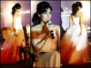 Chitrangada Singh For United Spirits Scotch Whiskey Collection