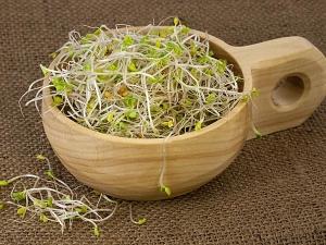 Five Ayurvedic Remedies Tp Increase Appetite
