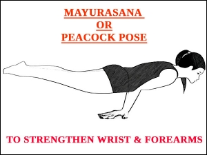 Mayurasana Peacock Pose To Strengthen Wrist And Forearms