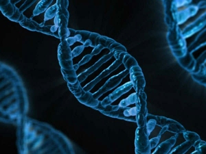 Same Set Of Genes Can Cause Happiness And Depression Research Revealed