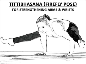 Tittibhasana Firefly Pose For Strengthening Arms And Wrists