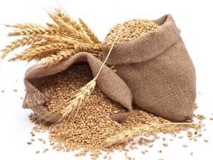 What Are The Symptoms Of Gluten Intolerance