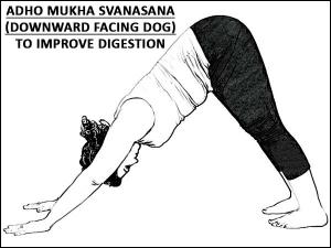 Adho Mukha Svanasana Downward Facing Dog To Improve Digestion