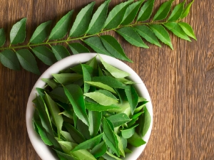Health Benefits Of Consuming Curry Leaves Daily