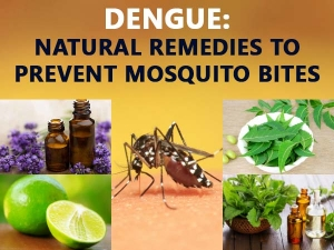 Dengue Natural Remedies To Prevent Mosquito Bites