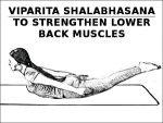 Viparita Shalabhasana To Strengthen Lower Back Muscles