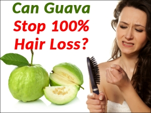 Can Guava Stop Hundred Percent Hair Loss