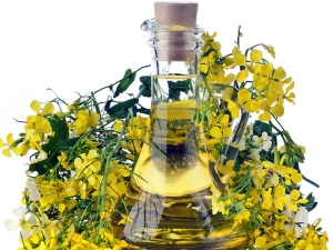 Can You Use Mustard Oil For Hair Find How