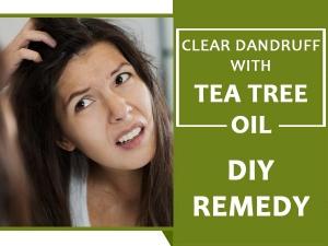 Five Diy Tea Tree Oil Remedies For Ninety Nine Percent Dandruff Clearance