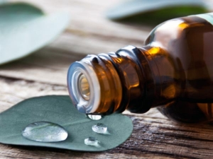 Ten Essential Oils That Help Your Health